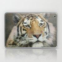 Tiger, Tiger Laptop & iPad Skin