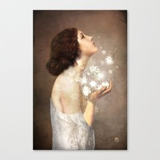 Wish Canvas Print