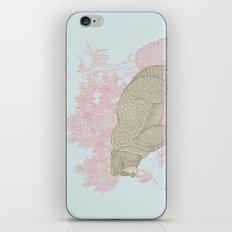 Bear! iPhone & iPod Skin