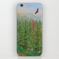 A Day of Forest(8). (coniferous forest) iPhone & iPod Skin