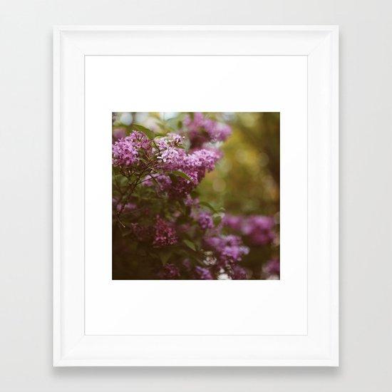 Lilac Daydream Framed Art Print