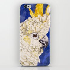 Sulphur Crested Cockatoo iPhone & iPod Skin