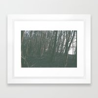 Mississippi River Framed Art Print