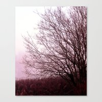 Along a Misty Bank Canvas Print