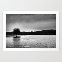 The Lonely Tree In The S… Art Print