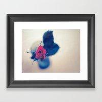 Rose In A Dream ~ Flower… Framed Art Print