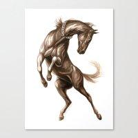 Ink Horse Canvas Print