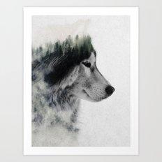 Wolf Stare Art Print