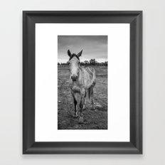 Jake Framed Art Print