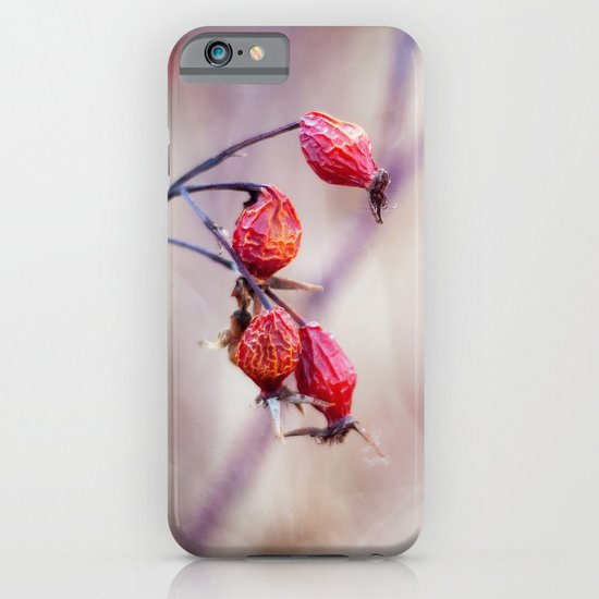 Rose Hips iPhone & iPod Case