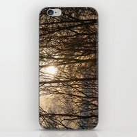 Iowa Winter Sun iPhone & iPod Skin