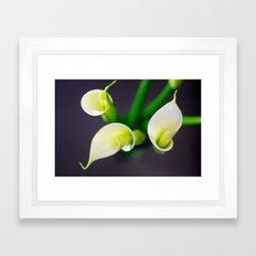 Lily Calla - three kids Framed Art Print