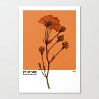 PANTONE 1385 U Canvas Print