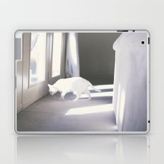 Le chat blanc Laptop & iPad Skin