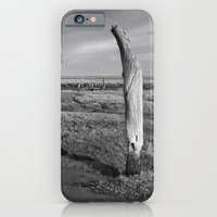 iPhone & iPod Case featuring The Sea Forest, Thornham, Norfolk by David Turner