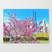 steal the show Canvas Print