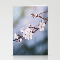 First Blossom Stationery Cards