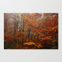 Orange Leaves Trees Fore… Canvas Print