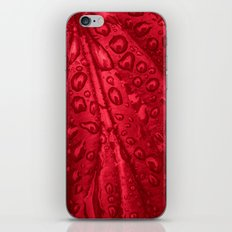 red passion I iPhone & iPod Skin