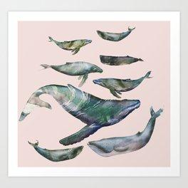 Art Print - whales - franciscomffonseca