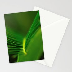 Fern Lines Stationery Cards