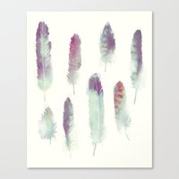 Feathers // Birds Of Pre… Canvas Print