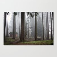 A foggy walk in the woods Canvas Print