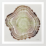 Tree Rings – Watercolo… Art Print
