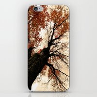 Great Heights iPhone & iPod Skin
