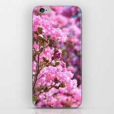 Memories of Pink Blossoms iPhone & iPod Skin