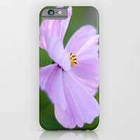 iPhone & iPod Case featuring Pink Cosmo by Katie Kirkland Photography
