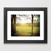 Golden Glory Framed Art Print