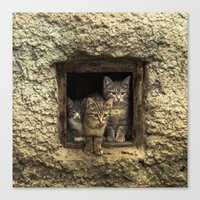 It's Warm Together! Canvas Print