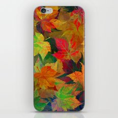Colors of Autumn iPhone & iPod Skin
