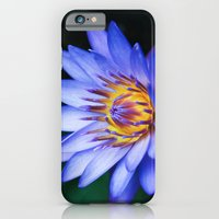 iPhone & iPod Case featuring Tropical Dreams by Sharon Mau