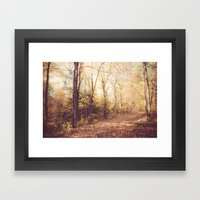New England Autumn Framed Art Print