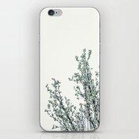 Soft White iPhone & iPod Skin