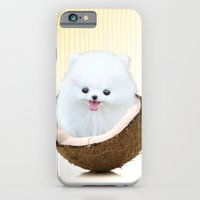iPhone & iPod Case featuring coconutty by C...