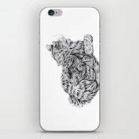 Pencil Cat iPhone & iPod Skin