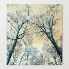 Trees Nature Infrared La… Canvas Print