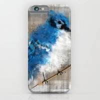 A Blue Jay Today iPhone 6 Slim Case