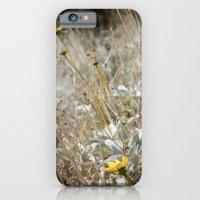 Rarity 2 iPhone 6 Slim Case