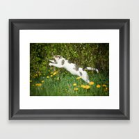 Cat, Bumble-bee And Dand… Framed Art Print