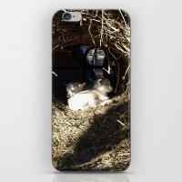 Baby O iPhone & iPod Skin