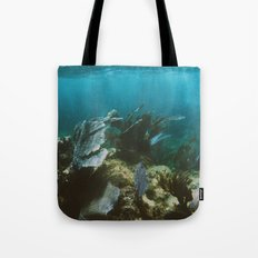 Mexican Caribbean Sealife Tote Bag