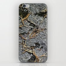 fir needle on a rock Texture iPhone & iPod Skin