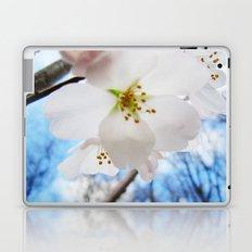 Cherry Blossom-1 Laptop & iPad Skin