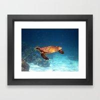 Sea Turtle Underwater An… Framed Art Print