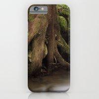 Paradise Creek II iPhone 6 Slim Case