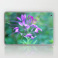 Cleome Laptop & iPad Skin